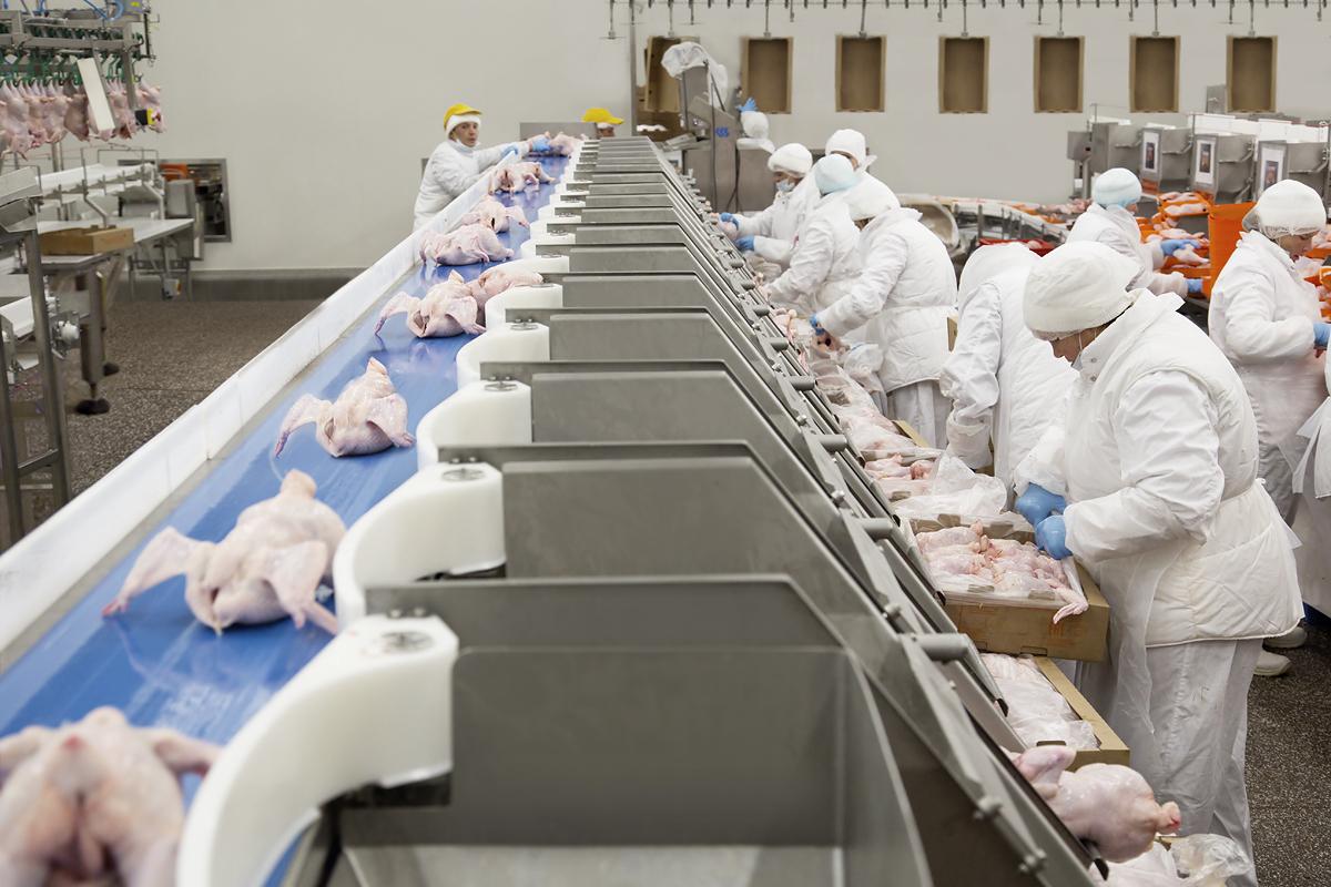 Мираторг и Брянская область заключили соглашение о расширении комплекса по выращиванию, убою и переработке цыплят бройлеров стоимостью 4,6 млрд рублей