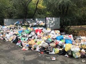 В Челябинске работает горячая линия по вывозу мусора