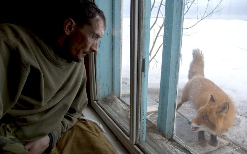 Брянский фотограф-натуралист Шпиленок ищет волонтера для поездки на Камчатку