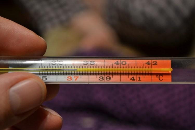В Брянске начала работать «горячая линия» по гриппу и ОРВИ