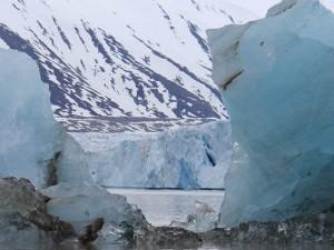 Арктика «человека планеты» Леры Авербах – в звуках и снимках