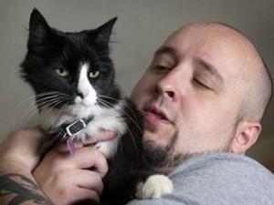 Вирусные видео котиков выпустили в прокат полнометражным фильмом