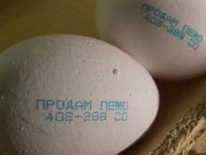 Яйца с объявлением на скорлупе появились в продаже Челябинской области