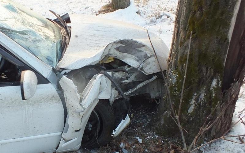 Под Дятьково иномарка врезалась в дерево — два человека пострадали