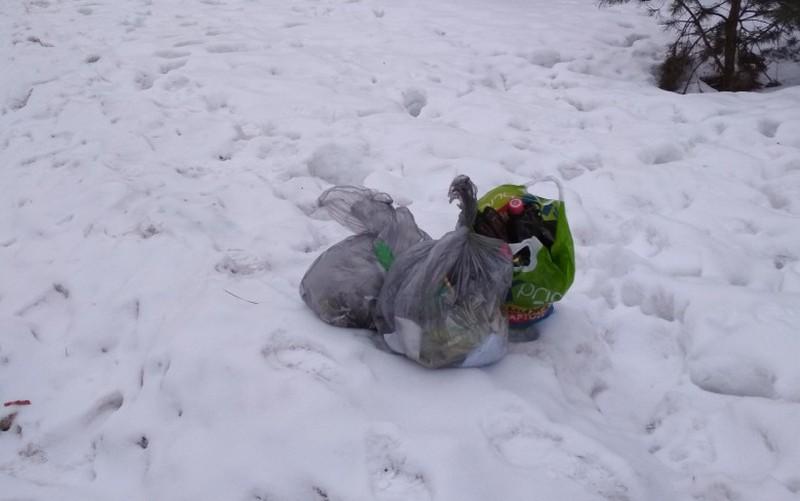 Оставленные вдоль дороги мешки с мусором возмутили брянца