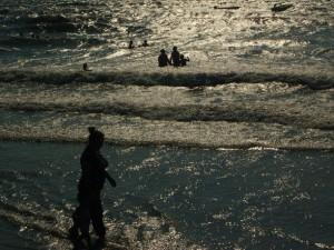 Ученые предупредили о ядовитых медузах у берегов Анталии в Турции