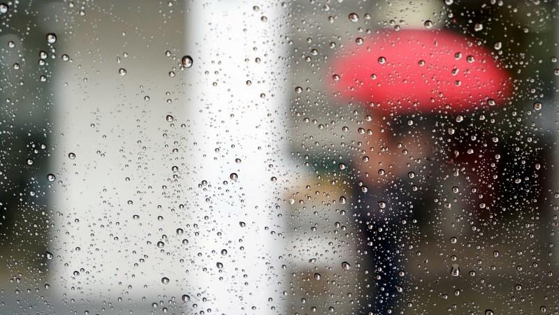 Завтра в Брянске будет облачно и дождливо