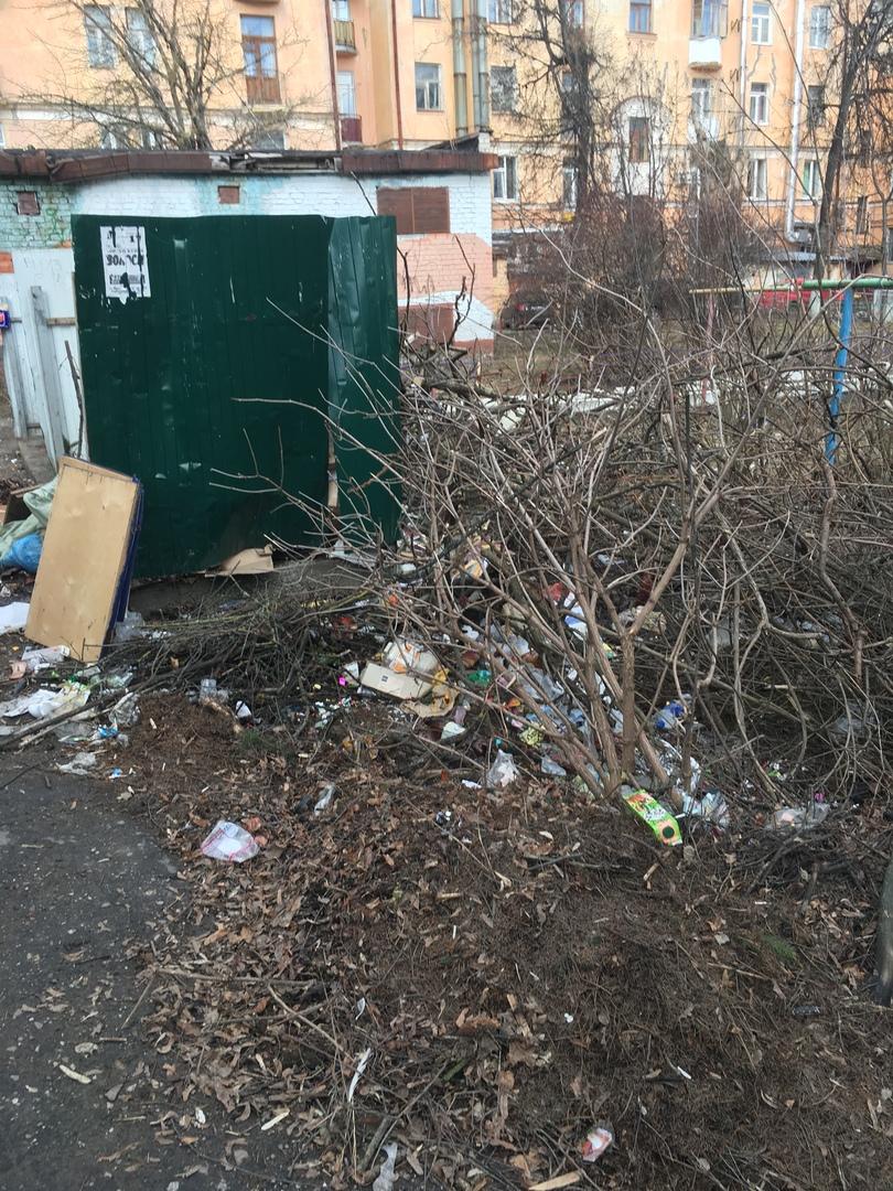 Коммунальщики месяц не убирают свалку в центре Брянска