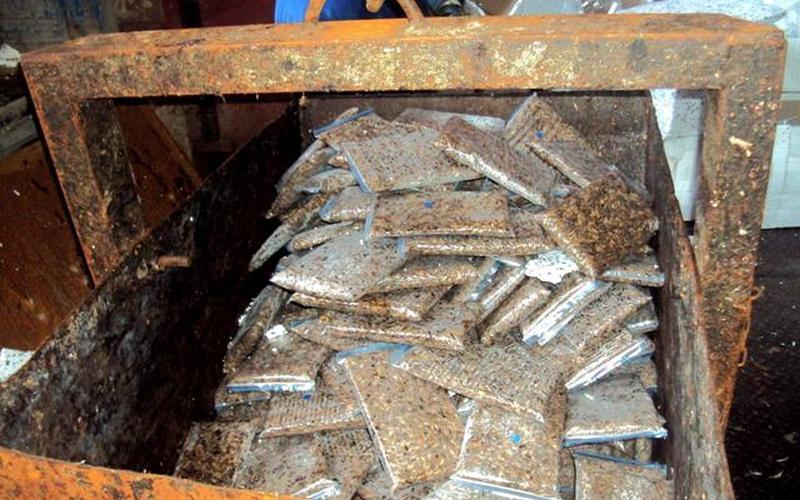 В Брянской области уничтожили 640 кг сверчков