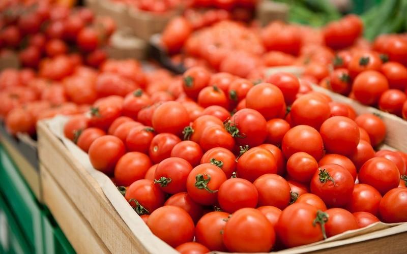 В Брянской области задержали 20 тонн томатов с молью