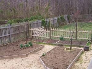 В апреле садоводов ждет много работы. Какой?