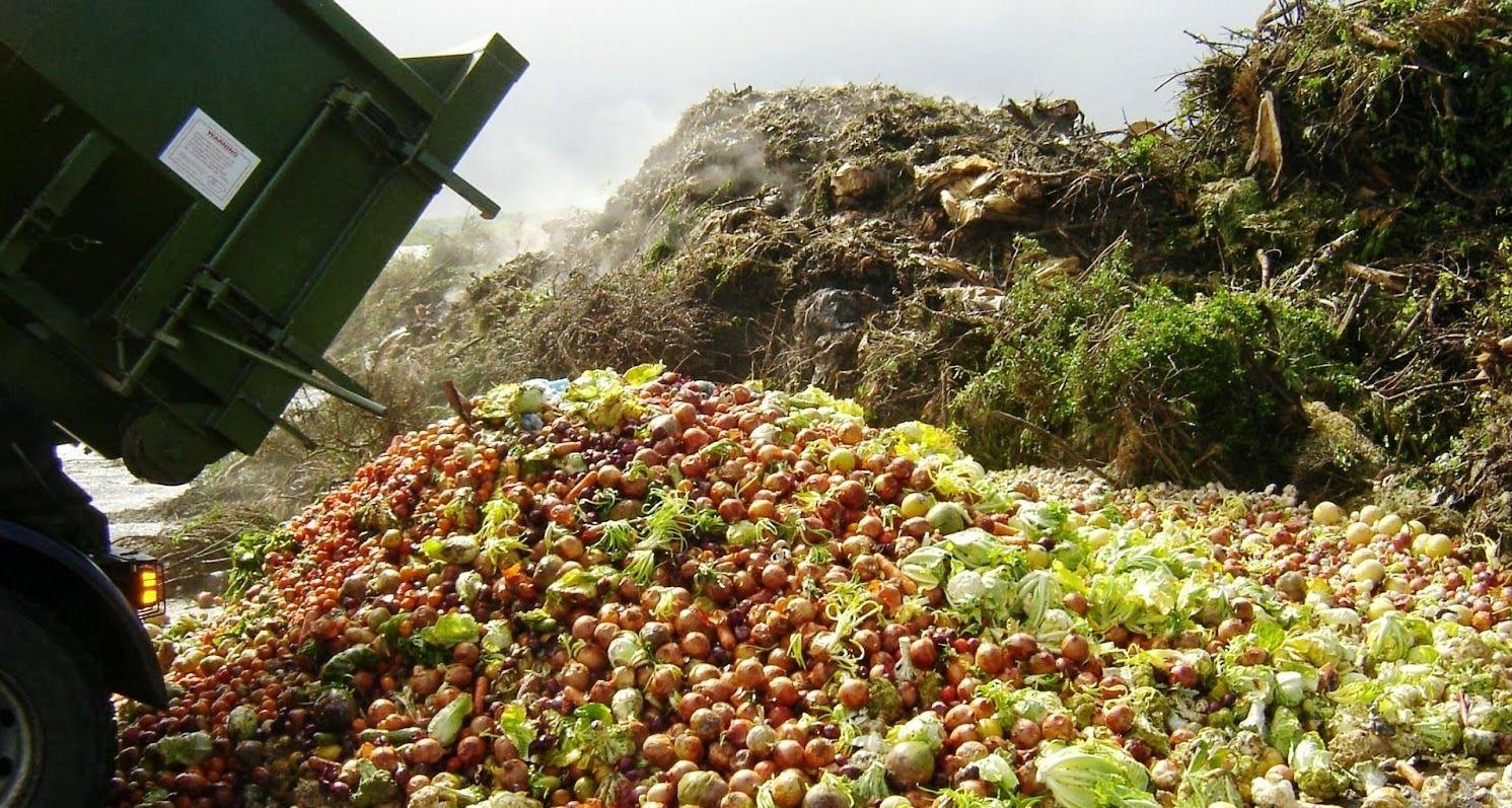В Брянской области уничтожили 4,5 тонны фруктов и овощей