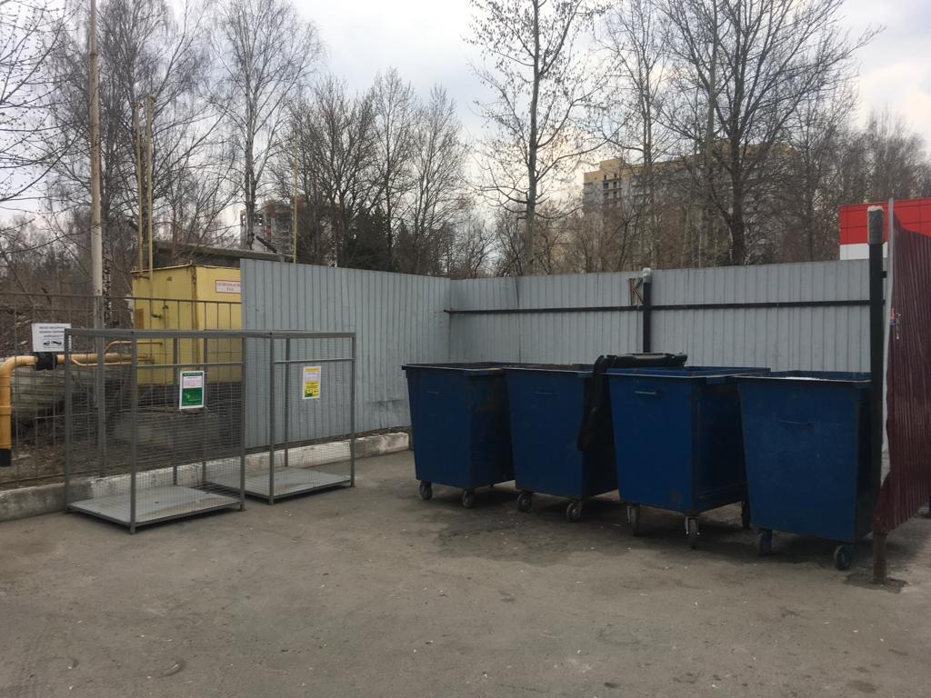 «Чистая планета» просит жителей Брянска не устраивать в городе свинарник