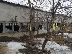 Нечистоты стекают в ржавые ванны заброшенных очистных сооружений в Полетаево