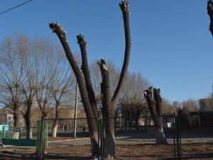 В Челябинске ожидаются НМУ