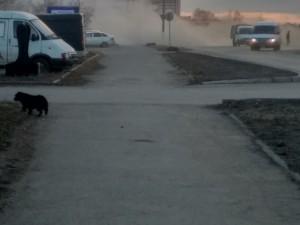 Густые клубы пыли накрыли Троицк