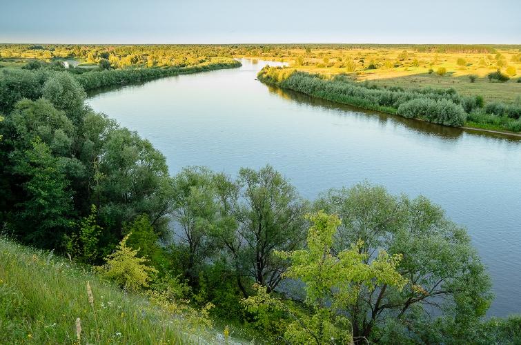 Брянские власти планируют сделать реку Десну судоходной