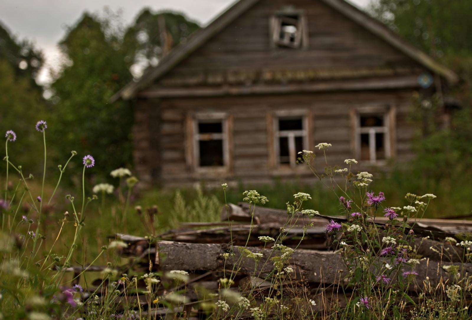 В Навлинском районе обнаружена деревня-призрак
