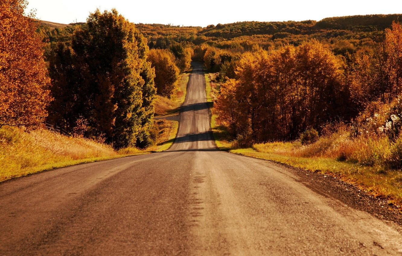 Брянская область занимает 4 место в рейтинге безопасных дорог