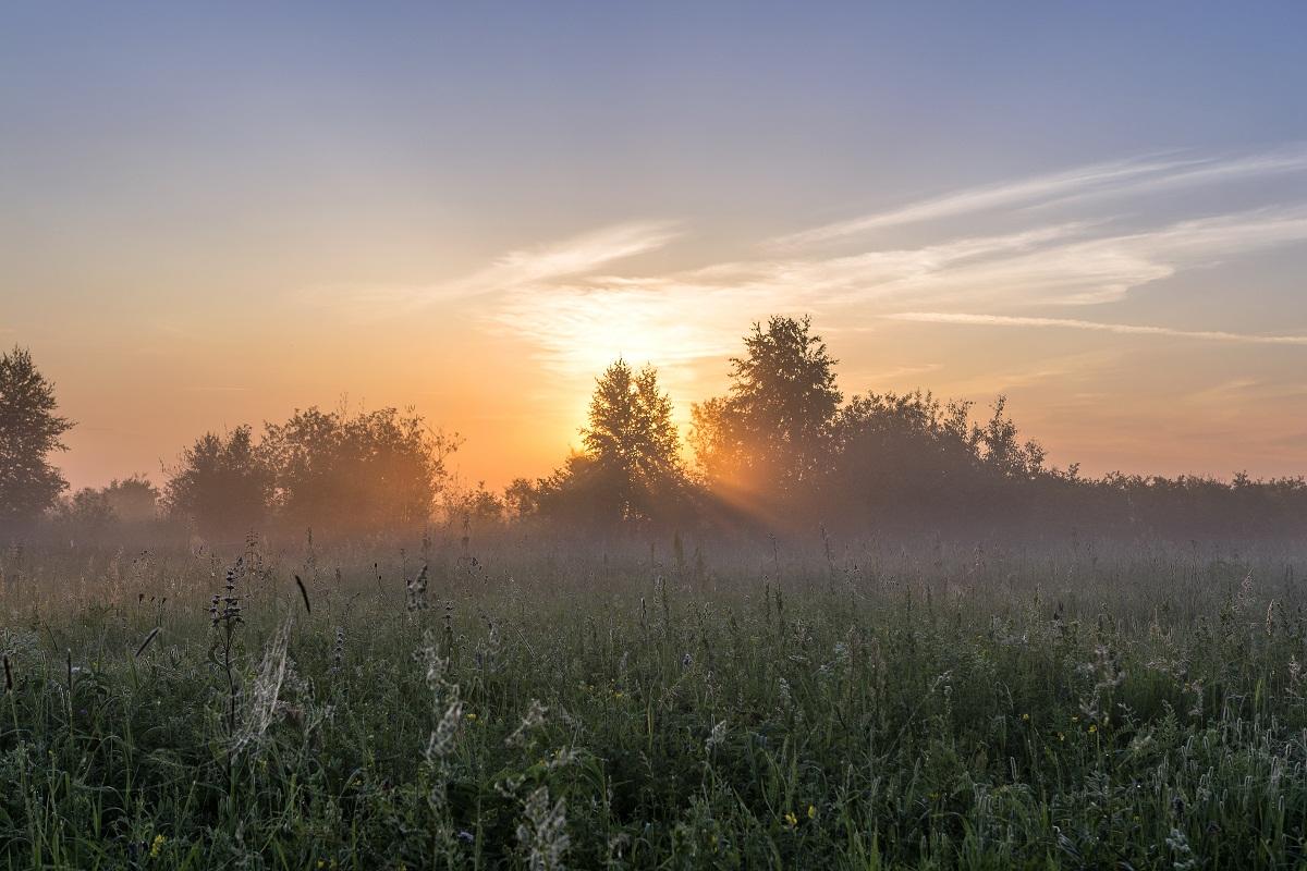 Утром пятницы вБрянской области возможен туман