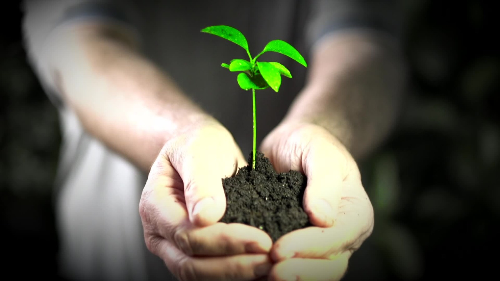 Компания «Умалат» сделает Севск более экологичным