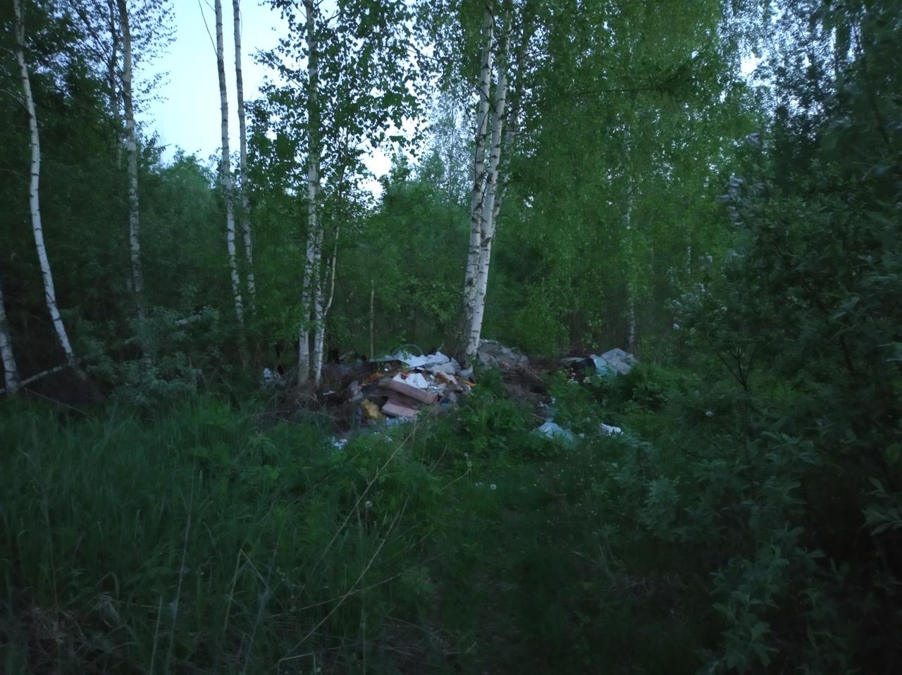 Жители Брянска пожаловались на нерадивых дачников