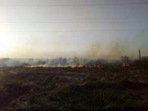 Особый противопожарный режим введен по всей территории Челябинской области