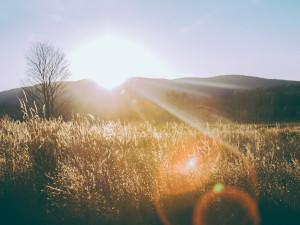 Солнечно и прохладно с утра в Челябинске