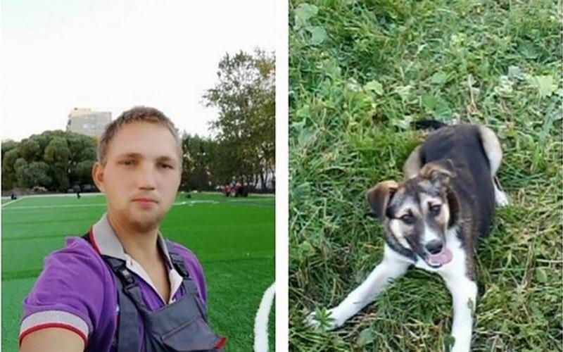 Мужчина вышел на прогулку с собакой и остался в лесу на неделю