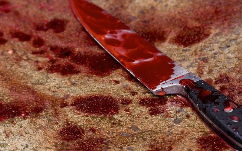 В Челябинской области зарезали ребенка и четверых взрослых