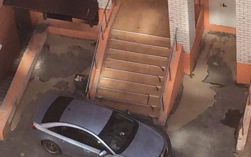 В Брянске виртуоз парковки перекрыл дорогу жильцам многоэтажки