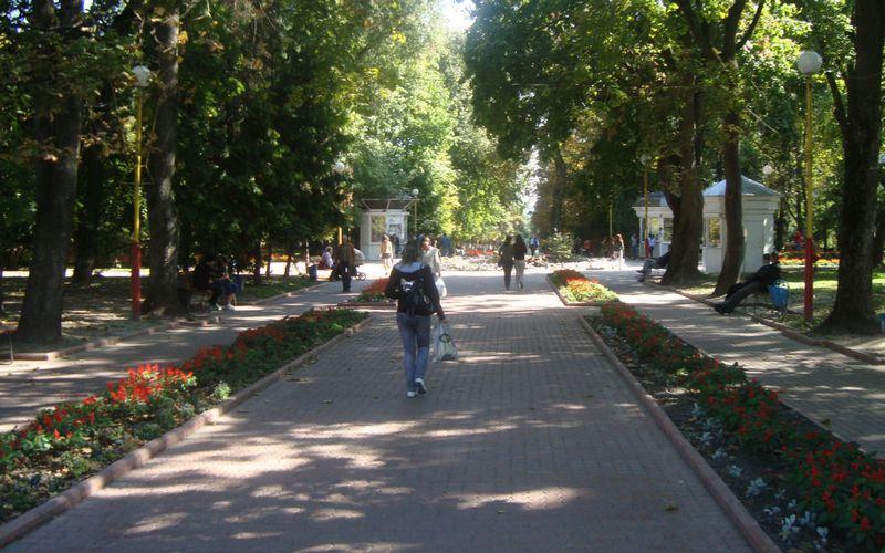 Виюне вБрянске приступят к реконструкции сквера Карла Маркса