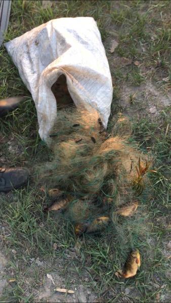 Орловские браконьеры наведались в нашу область