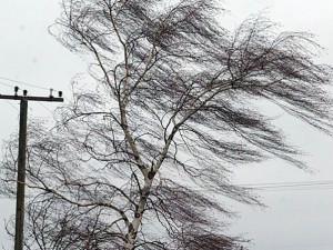 Штормовое предупреждение вновь объявлено в Челябинской области