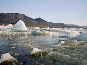 Россия прирастает новыми островами в Арктике