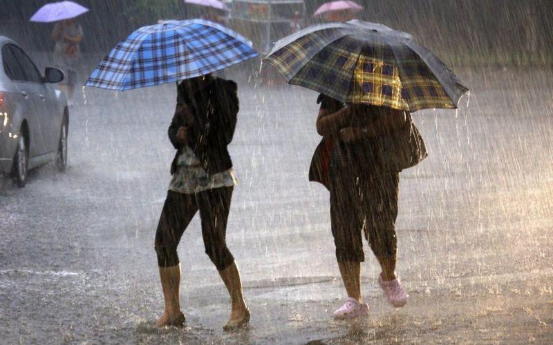 В понедельник на Брянщине прогнозируют дождь и грозу