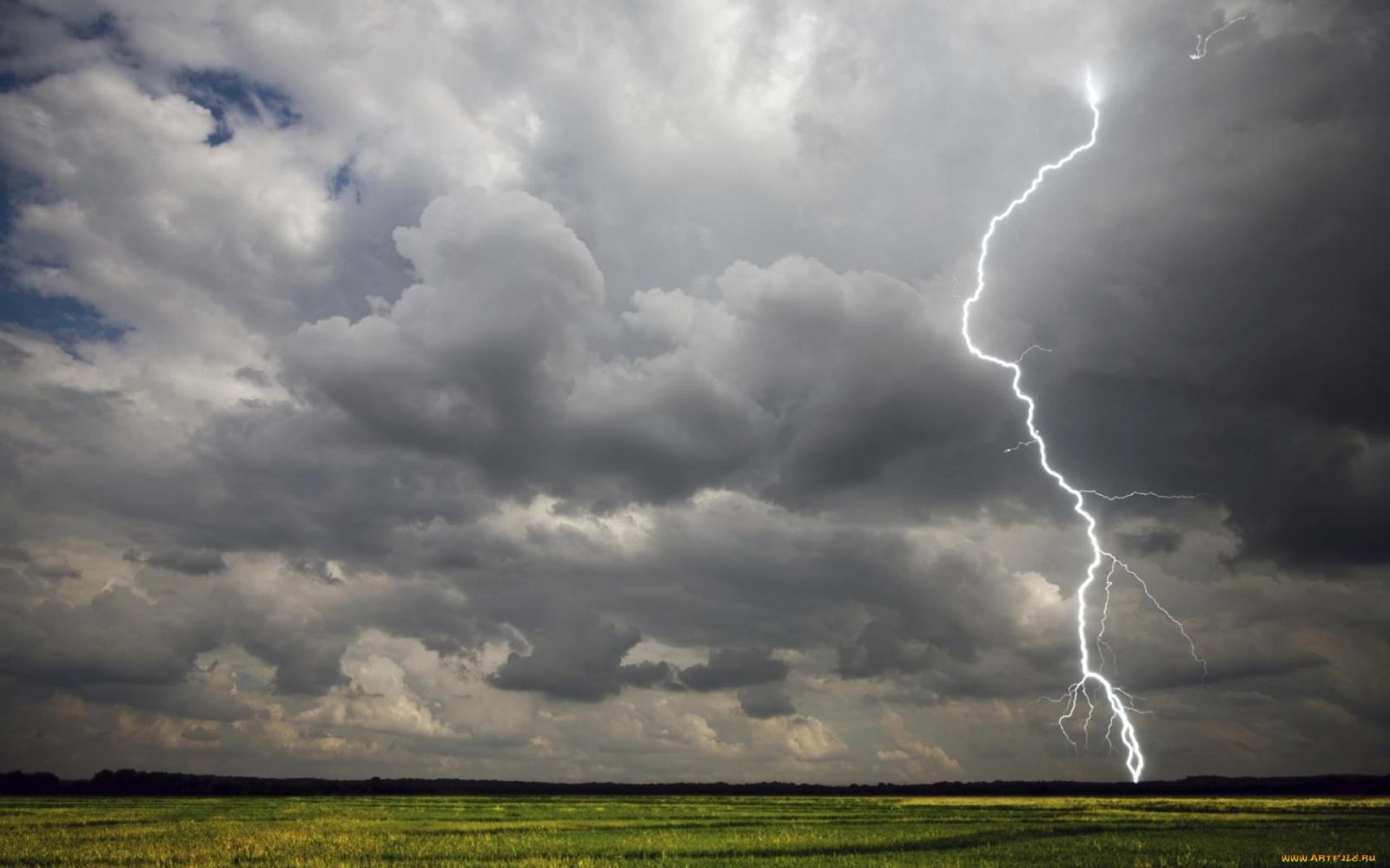 Во вторник в Брянске дождливо, возможны грозы