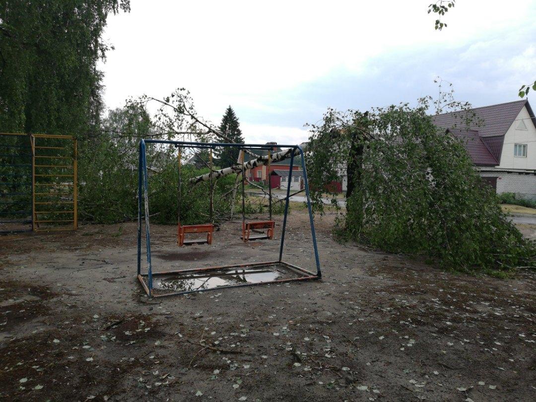 В ГУ МЧС Брянской области отчитались о последствиях сегодняшней непогоды