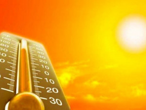 Аномальную жару для России предсказал климатолог Чернокульский
