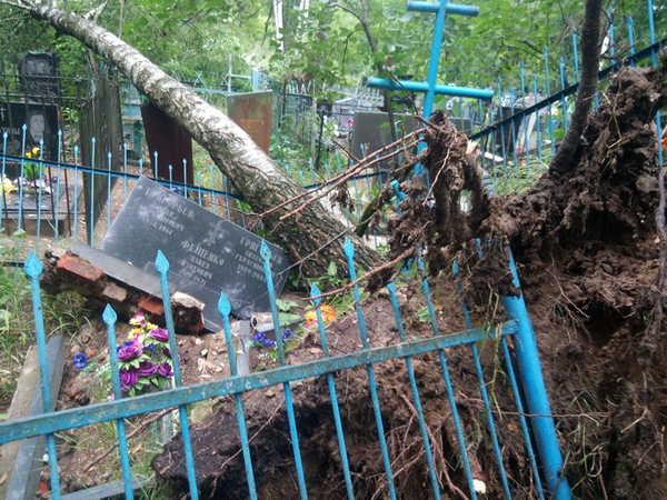 В Клинцах разбирают погром на кладбище, устроенный ливнем