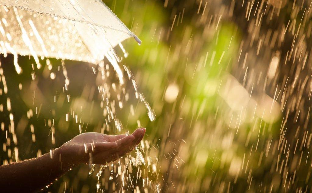 В воскресенье в Брянске ожидается дождь с грозой