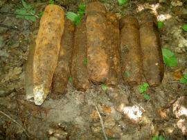 9 артиллерийских снарядов обезвредили вБрянском районе