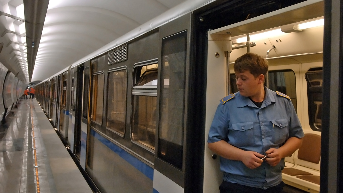 В Москве девушка упала под поезд метро и выжила
