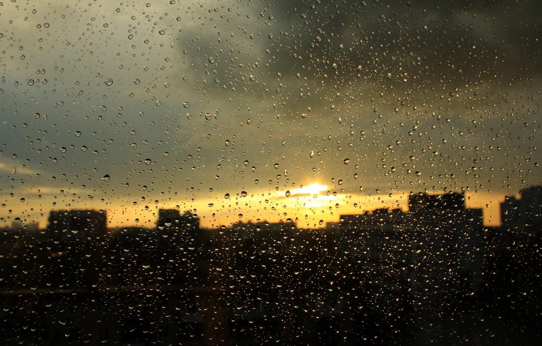 В среду в Брянске вновь возможен дождь с грозой