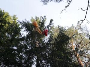 Выжила при свободном падении с высоты в 1500 метров