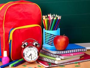 Дать денег семьям на подготовку к школе предложил депутат Госдумы