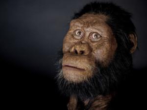 Это лицо помогает заглянуть на 3,8 миллиона лет в прошлое