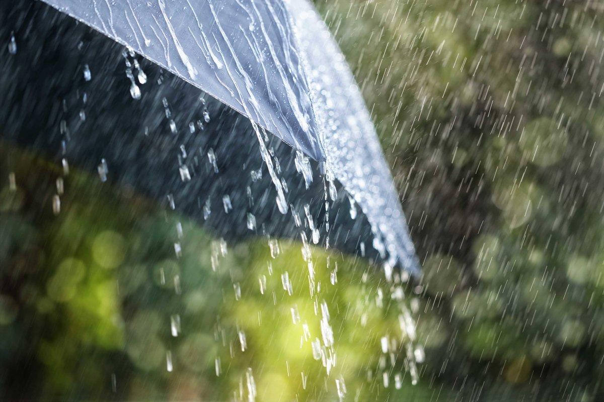 Завтра в Брянске будет прохладно и дождливо