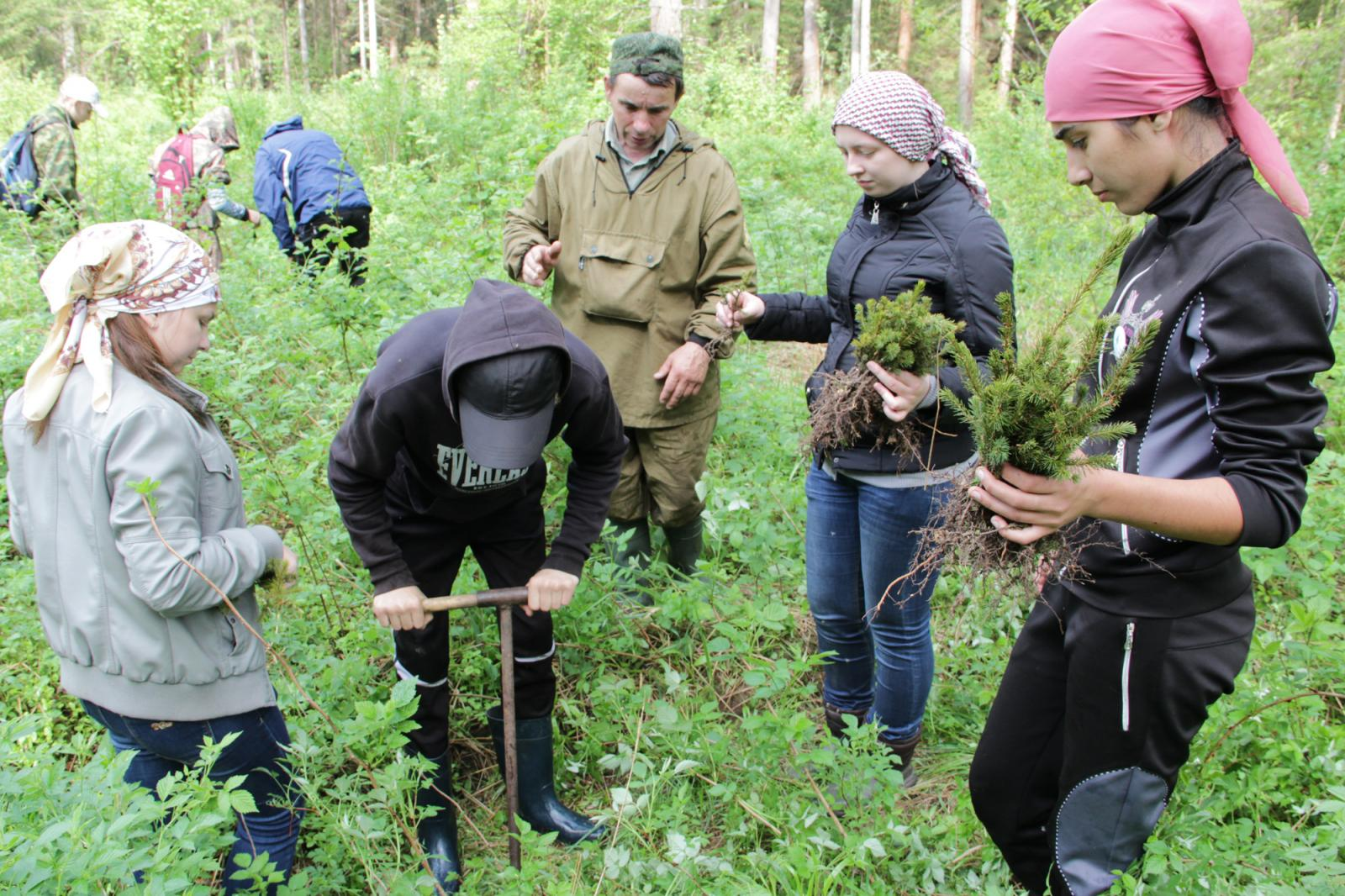 Акция «Живи, лес!» стартовала в Брянской области