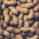 В Россию вернется арахис из США
